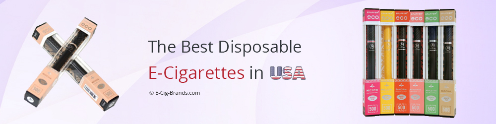 the best disposable electronic cigarettes in usa